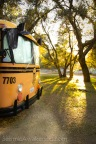 Glorya Marie the '77 Crown Bus Tiny House Catching The Afternoon Sun